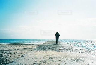 男性の写真・画像素材[5682]