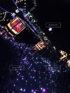 夜景の写真・画像素材[262365]