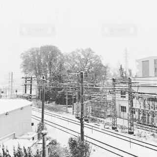 雪の写真・画像素材[264383]