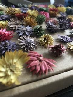 近くの花のアップの写真・画像素材[1872093]