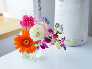 花の写真・画像素材[369201]