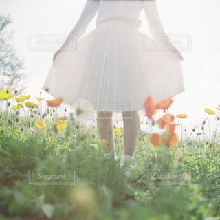 女性の写真・画像素材[5564]