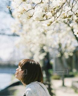 女性の写真・画像素材[5549]