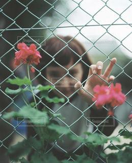 女性の写真・画像素材[5504]