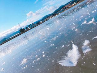羽,bright,冬物語,澄んだ青