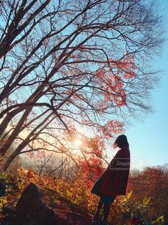 秋のあなたの写真・画像素材[350713]