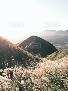 自然の写真・画像素材[5468]