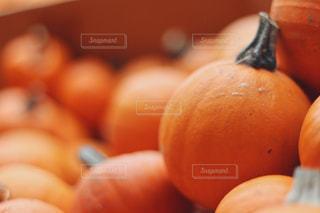 近くにオレンジの鉢のアップの写真・画像素材[1528174]