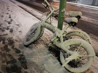 冬の写真・画像素材[312708]