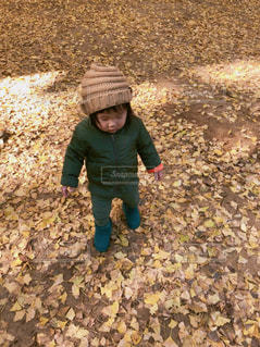 お散歩してる子供の写真・画像素材[900297]