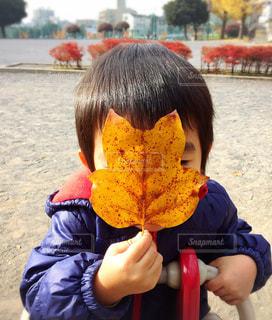 葉っぱのお面の写真・画像素材[271171]