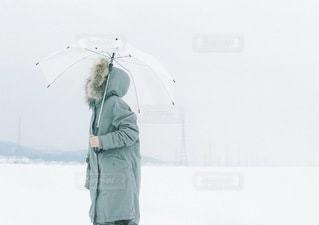 冬 - No.5354