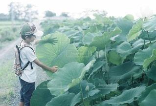 子どもの写真・画像素材[5309]