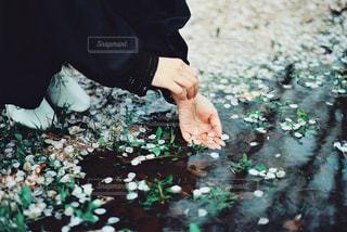 花を持っている人の写真・画像素材[1824741]