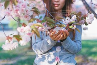 花を保持している小さな女の子の写真・画像素材[1824742]