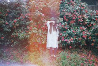 茂みの前にある赤い消火栓の写真・画像素材[2123451]