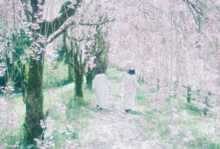 森の中の人々のグループの写真・画像素材[2123457]