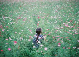 緑豊かな野原に立っている子供の写真・画像素材[2123623]