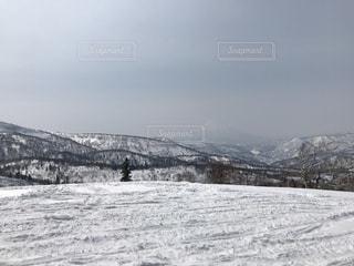 雪の写真・画像素材[423207]
