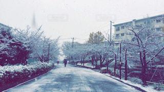 風景 - No.265309