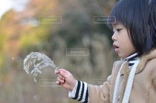 子ども - No.5242