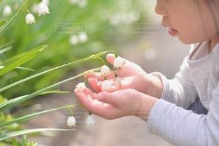 子どもの写真・画像素材[5238]