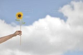 空の写真・画像素材[5203]