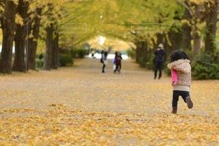 子どもの写真・画像素材[5184]
