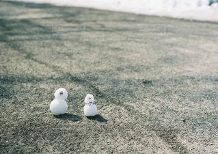 冬の写真・画像素材[267664]