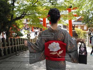 京都の写真・画像素材[597385]
