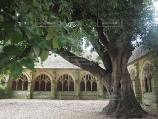 建物の前にツリーの写真・画像素材[1315473]