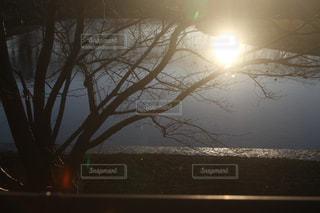 自然の写真・画像素材[268083]