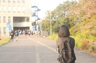 女性,1人,秋,後ろ姿,散歩,女子大生,大学,お散歩,うしろすがた