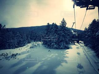 冬の写真・画像素材[311723]