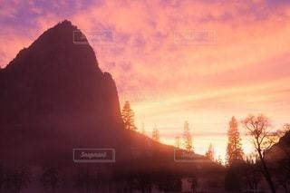 自然の写真・画像素材[5026]