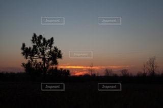 自然の写真・画像素材[4951]