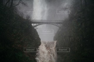 自然の写真・画像素材[4920]