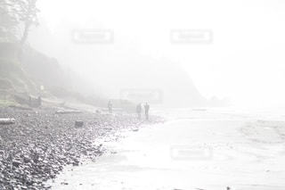 自然の写真・画像素材[4902]