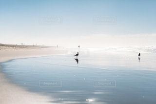 自然の写真・画像素材[4744]