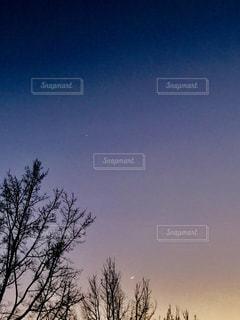 夜景の写真・画像素材[327137]