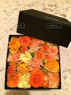 花の写真・画像素材[271411]