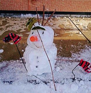 雪の写真・画像素材[269718]