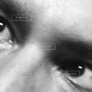 男性の写真・画像素材[269541]