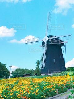 空と風車とお花の写真・画像素材[743559]