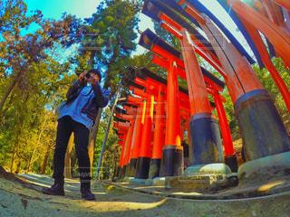 京都の写真・画像素材[427861]