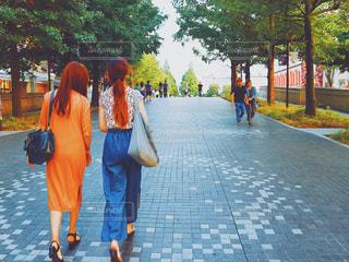 秋の歩道の写真・画像素材[731428]