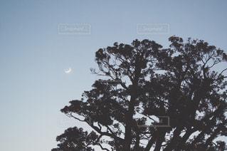 空の写真・画像素材[270417]