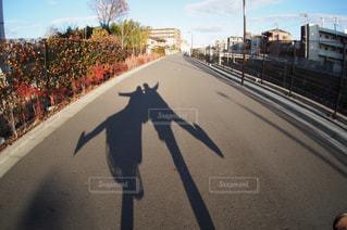 恋人の写真・画像素材[283713]