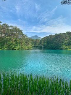 水域の隣の池の写真・画像素材[2408782]