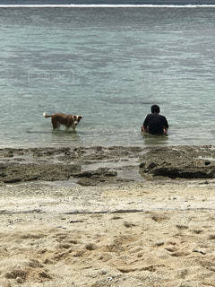 水域の近くの浜辺にいる人々のグループの写真・画像素材[2099277]